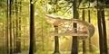 Desain Hotel Pohon Paling Keren di Dunia