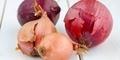 5 Bahan Makanan Pengganti Gizi Bawang Merah