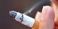 Filter Rokok di Indonesia Mengandung Darah Babi?