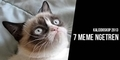 7 Meme yang Ngetren Sepanjang 2013