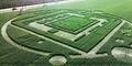 Crop Circle Bercahaya Hijau Muncul di California, Karya Alien?
