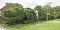 Pria Inggris Bentuk Pagar Tanaman Menyerupai Naga Sepanjang 30 Meter
