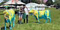 Festival Musik Glastonbury di Inggris Ubah Sapi jadi Hotspot WiFi