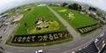 Desa Inakadate Jepang Ubah Sawah jadi Lukisan dengan Padi Warna-warni