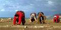 Penyakit Langka Sindrom Uner Tan, 5 Bersaudara di Turki Berjalan Merangkak