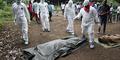 Balita ini Sebarkan Virus Ebola di Afrika