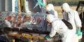 Dua Warga Amerika Sembuh dari Virus Ebola