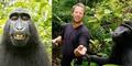 Ternyata Monyet Selfie itu Tinggal di Indonesia