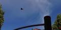 Video Penampakan UFO Ini Nyata?