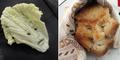 Seni Membentuk Wajah dari Makanan Karya Victor Nunes