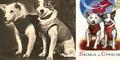 Baju Anjing Astronot Belka dan Strelka Dilelang Rp 116 juta