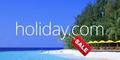 Domain Holiday.com Dilelang Rp 407 Miliar