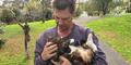 Sally, Kucing Pintar Selamatkan Nyawa Majikan dari Kebakaran