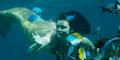 Video Putri Duyung Berselancar di Hawaii