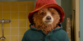 Trailer Film Beruang Lucu Paddington