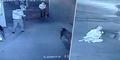 Buru Babi Liar, Polisi China Justru Tembak Seorang Wanita