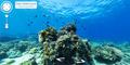 Yuk Menyelam di Bawah Laut dengan Google Street View Underwater!