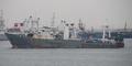 3 WNI Kru Kapal Korsel Oryong 501 Ditemukan Selamat