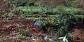 Ajaib, Rumah Guru Ngaji Utuh Terhindar dari Bencana Longsor Banjarnegara