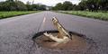 Buaya 4 Meter Dibunuh Usai Kejar Pejalan Kaki di Australia