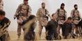 ISIS Latihan Penggal Tawanan Menggunakan Hewan