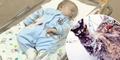 Masha, Kucing Heroik Selamatkan Bayi Terlantar Dipuji Dunia