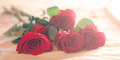 6 Hal Perusak Hari Valentine