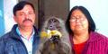 Pasangan Kaya di India Tunjuk Monyet Jadi Ahli Waris