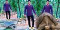 Selfie Injak Penyu Langka, Pemuda India Dipenjara