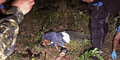 Militer Thailand Tembak Mati 4 Pemberontak Muslim