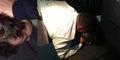 Penumpang Teriak 'Jihad', Penerbangan United Airlines Batal
