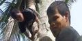 Pria Tunanetra Panjat Pohon Kelapa dengan Posisi Terbalik