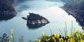 Pulau Kura-Kura di China ini Hanya Muncul Saat Musim Semi