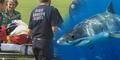 Kaki Peselancar Australia Buntung Dimakan Hiu Raksasa