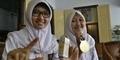 Tusuk Gigi Pendeteksi Kandungan Boraks Temuan Anak Indonesia