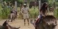 Anak Kecil Tunggangi Dinosaurus di Trailer Baru Jurassic World