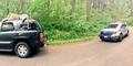 Boneka Harimau di Atas Mobil Bikin Polisi Ketar-ketir