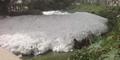 Danau di India Penuh Busa Karena Air Kencing