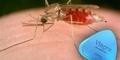 Ternyata Viagra Bisa Menangkal Malaria