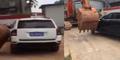 Parkir Liar di Tiongkok, Mobil Langsung Digusur Ekskavator