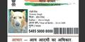 Buatkan Anjing KTP, Pria India Dicokok Polisi