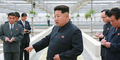 Dinilai Tak Becus, Kim Jong Un Hukum Mati Peternak Kura-kura