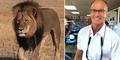 Dokter Gigi Amerika Bunuh Singa Kesayangan Zimbabwe Jadi Buronan