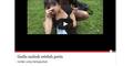 Cara Atasi Facebook Posting Konten Porno