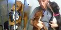 Menanti Suntik Mati, Dua Anjing Berpelukan Sedih