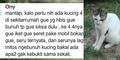 Ony, Pembantai Kucing Sidoarjo Bikin Geram Ribuan Netizen