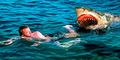 Pria Australia Tewas Diterkam Hiu di Depan Putrinya