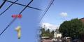 Ratusan Dildo Misterius Nyangkut di Kabel Listrik Portland