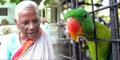 Burung Beo Dipolisikan Sebab Usil pada Nenek 85 Tahun