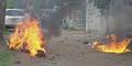 Dua Maling Sapi Dibakar Warga Madura Hidup-hidup